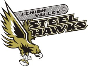STEELHAWKS PRIMARY LOGO